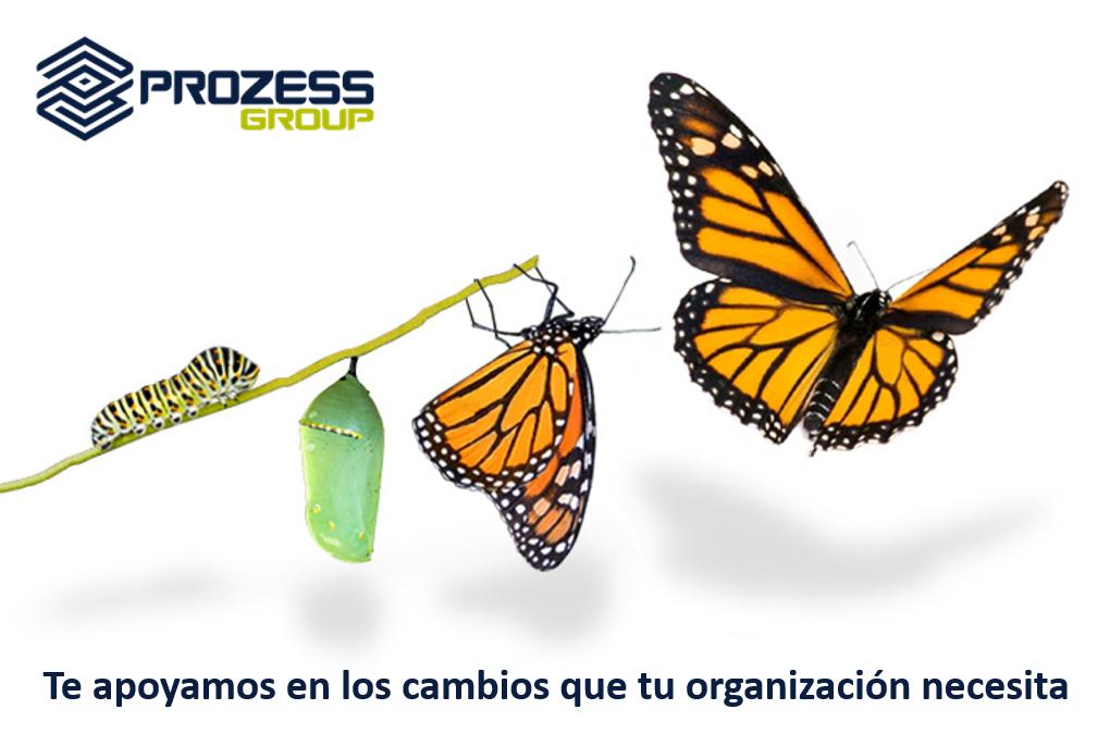 Resultat d'imatges de gestión del cambio en las organizaciones